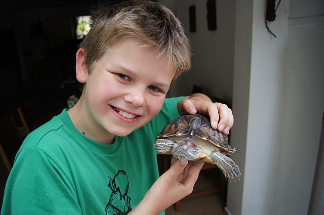 Matthew and terrapin